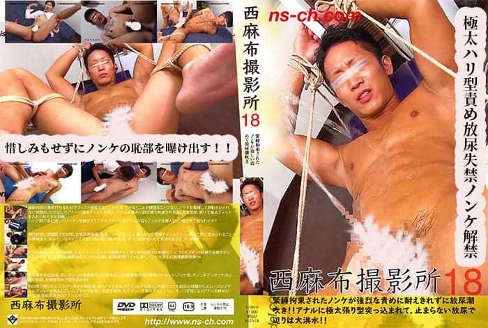 NSCH018